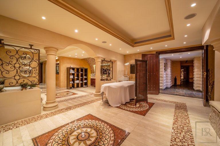 Villa Palatial Emirates Hills - Dubai, UAE deal for sale For Super Rich