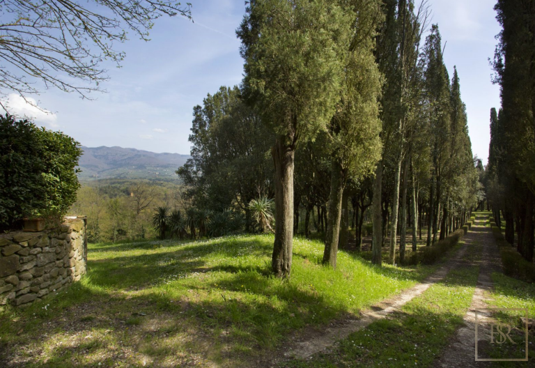 1427 Castle Tuscany - Florence, Italy real estate for sale For Super Rich