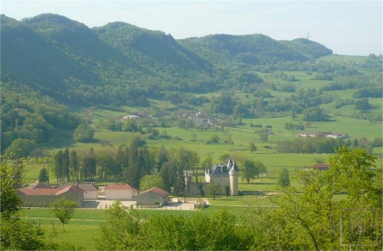 French Castle XIV Century - Near Geneva, Area Franche-Comté search for sale For Super Rich