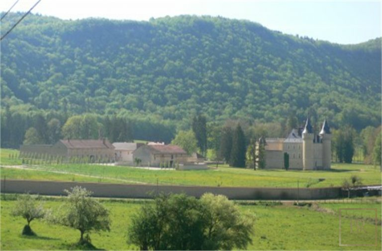French Castle XIV Century - Near Geneva, Area Franche-Comté property for sale For Super Rich