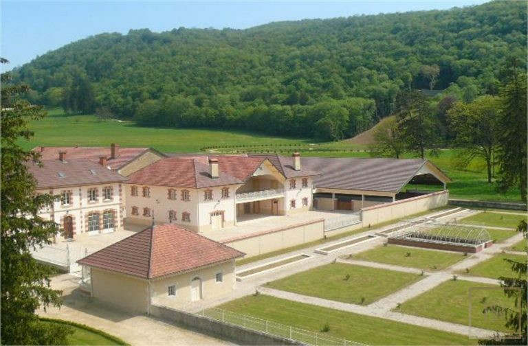 French Castle XIV Century - Near Geneva, Area Franche-Comté 133 for sale For Super Rich